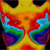Find a Center Near You - Find Breast Thermography